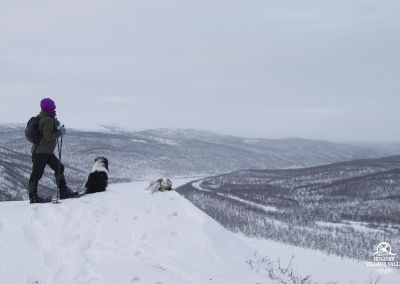gallery-nature-utsjoki-holiday-village-valle-lapland-014