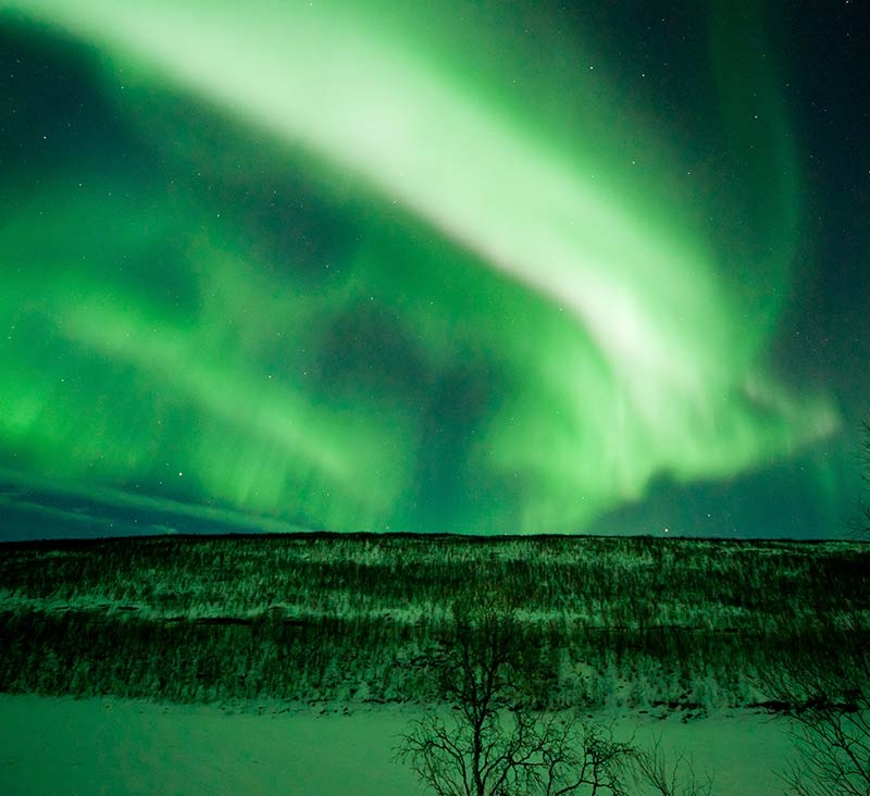 Seeking the northern lights with reindeers