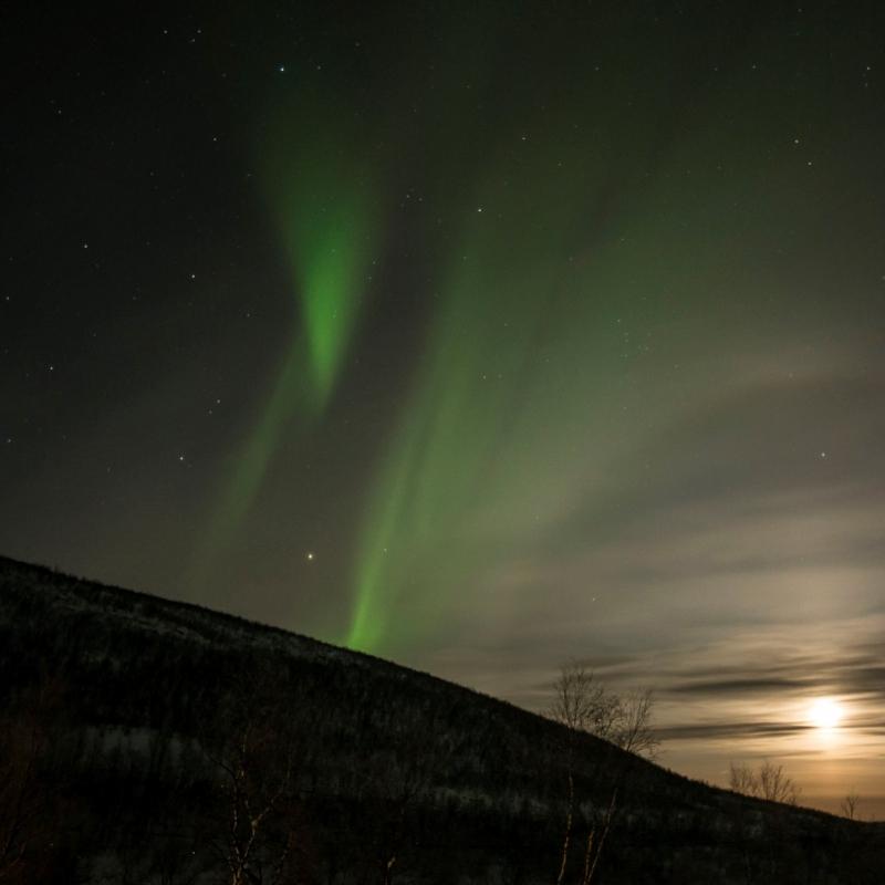 Northern Lights walk