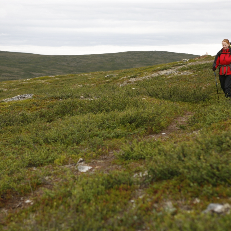 Hiking in Utsjoki