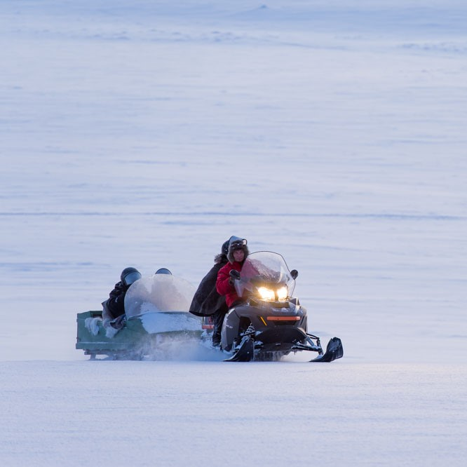 Snowmobile sleigh tour on the fells